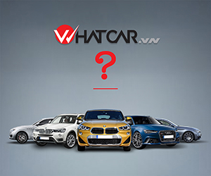 whatcarvn