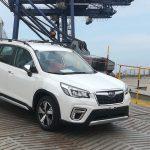 Subaru Forester 2019 nhập Thái về Việt Nam, giá dự kiến từ 1,1-1,3 tỷ đồng