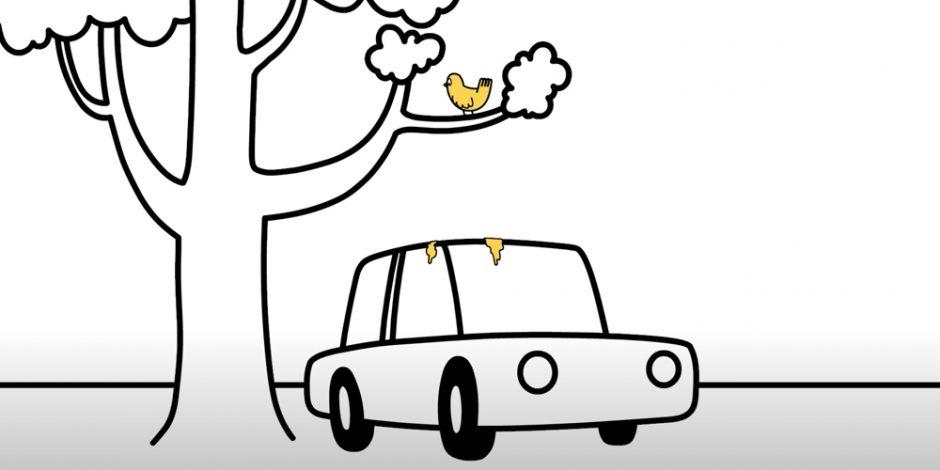 Phân chim thực chất bao gồm cả nước tiểu lẫn chất thải tiêu hóa.